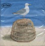 Seagull on basket
