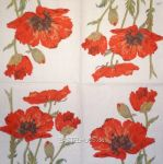 IHR Red poppy white 1/2