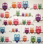 Colourful owls 1/1