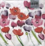 Tulips and poppies white