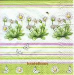 Bellis light green
