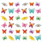 Butterflies collage