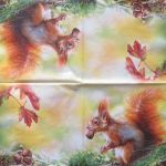 Red squirrel with nut 1/2