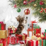 Kitten and baubles
