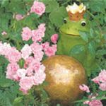 Frog prince with roses PACKUNG