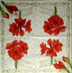 IHR Amaryllis collage cream 1/2
