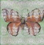 IHR Lacy butterfly green