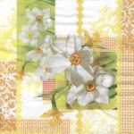 Narcissus Patchwork