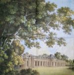 Sanssouci multicolored 1/1